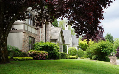 What is a For Sale by Owner house?